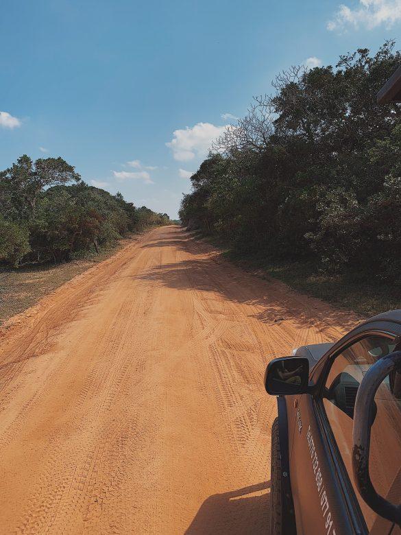 Voyage au Sri Lanka : 8 choses à savoir avant de partir