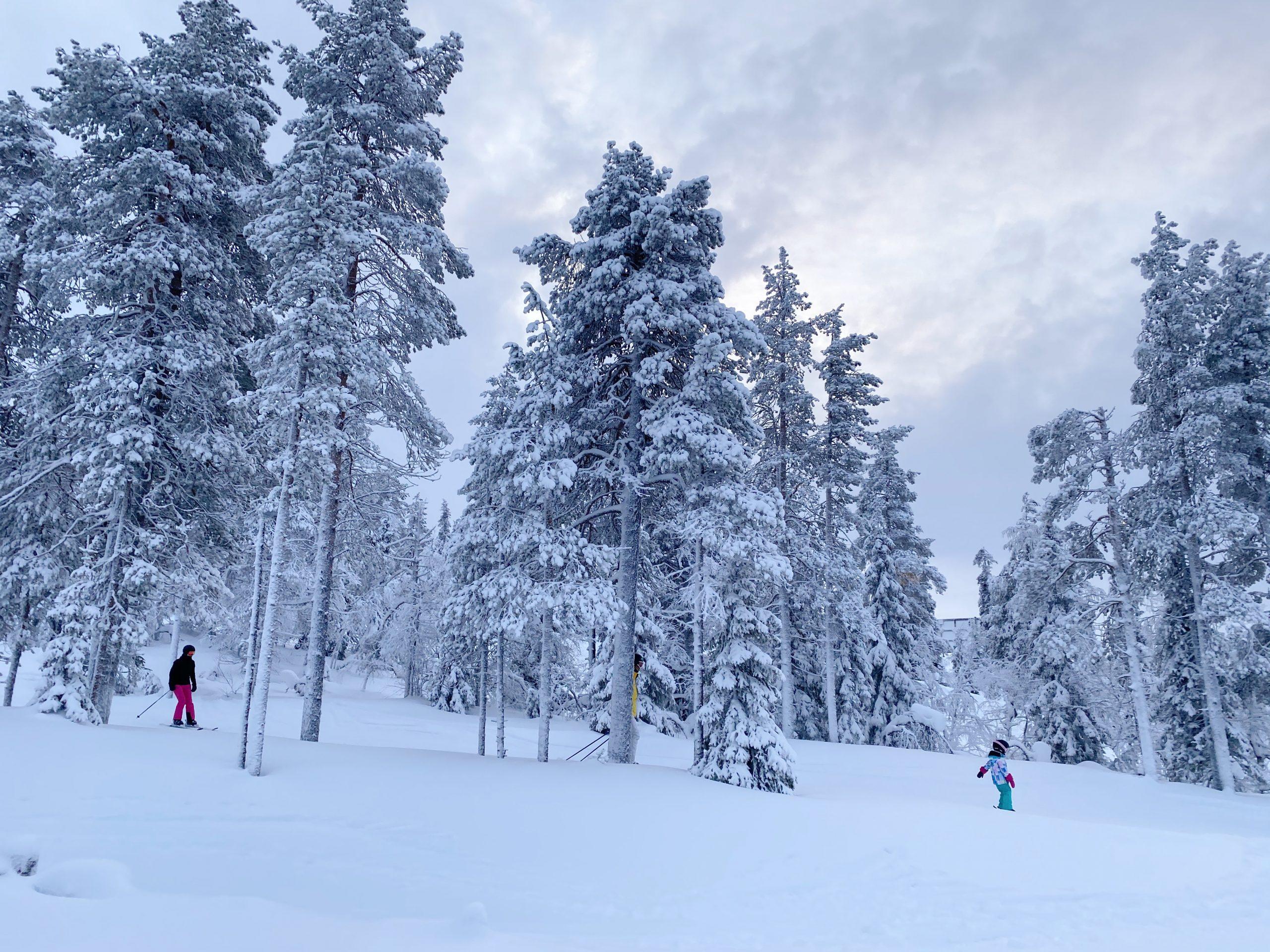 ski resort levi